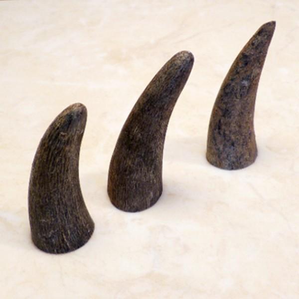 10er-Pack Hornspitzen ca. 6-7 cm