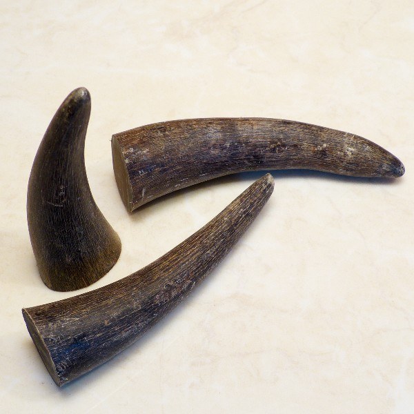 10er-Pack Hornspitzen ca. 9-10 cm