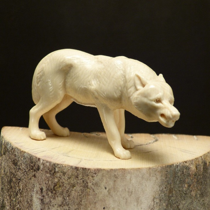 Zähne fletschender Wolf