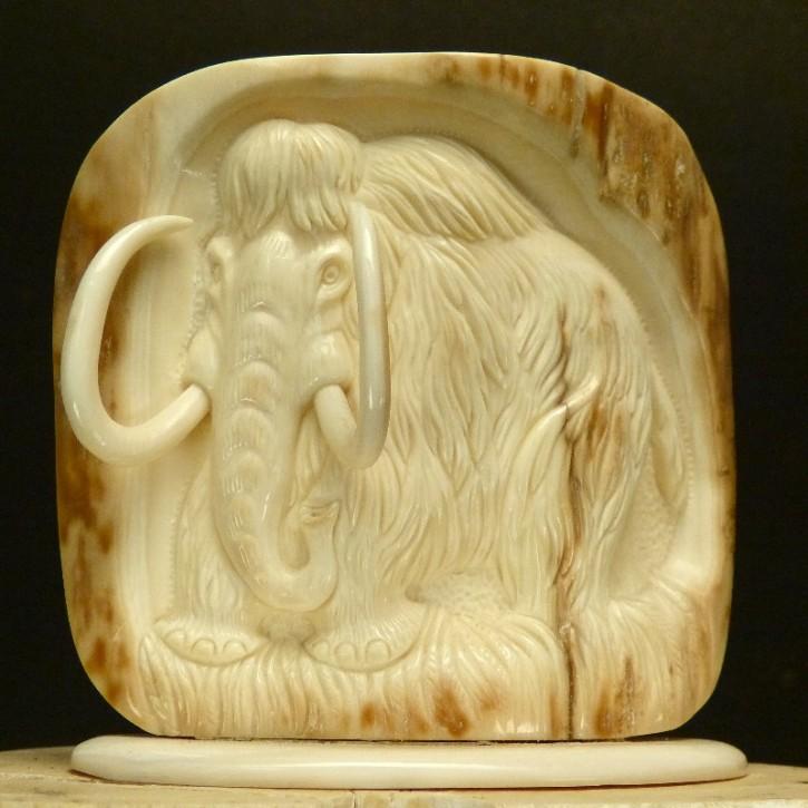 Mammut-Relief aus der Rinde