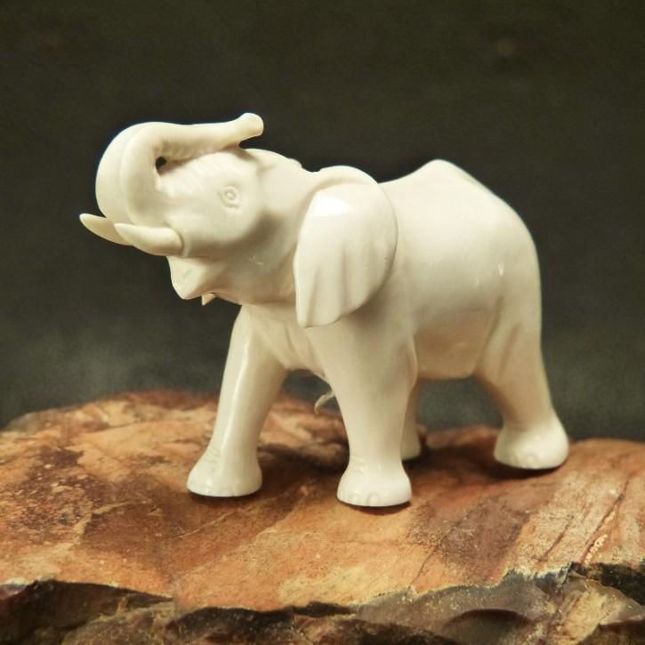 Elefant aus hellem Mammut