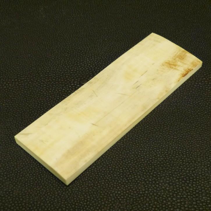 Schalenplatte ca. 101 x 34,5 x 5,5mm
