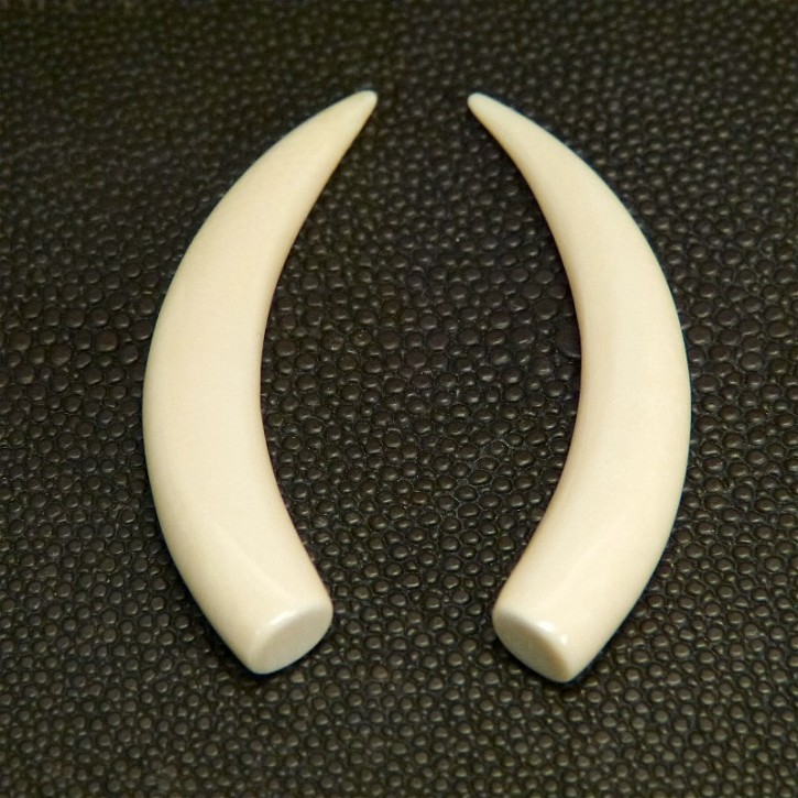 1 Paar Ersatzstoßzähne ca. 53mm lang