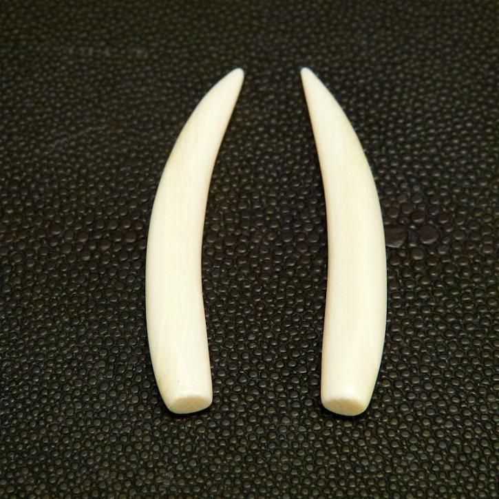 1 Paar Ersatzstoßzähne ca. 58mm lang