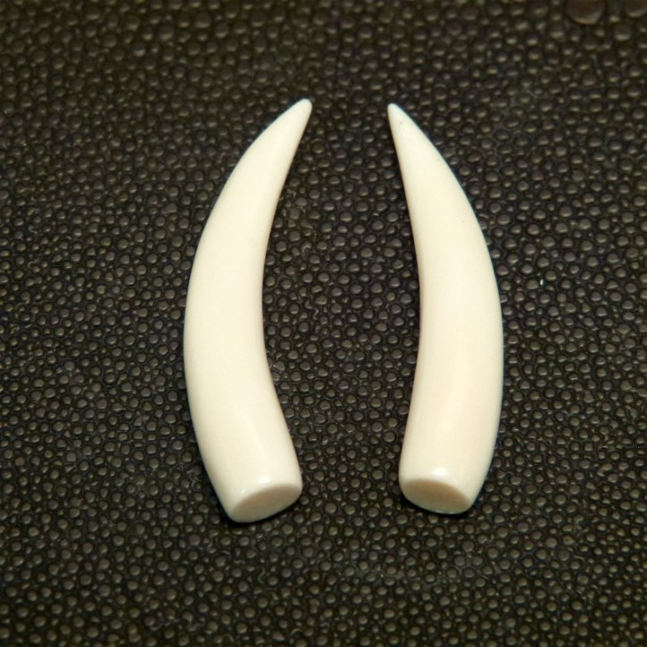 1 Paar Ersatzstoßzähne ca. 40mm lang