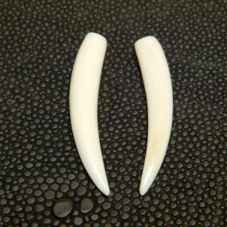 1 Paar Ersatzstoßzähne ca. 35mm lang