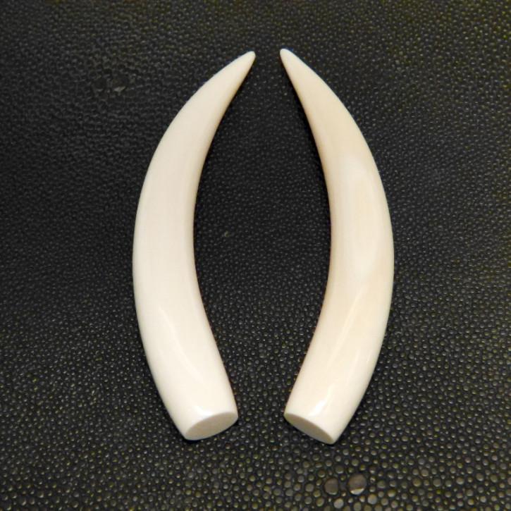 1 Paar Ersatzstoßzähne ca. 12,5 x 93mm