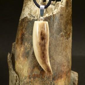 Zahnanhänger mit brauner Färbung