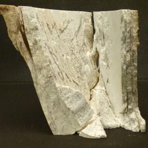 Mammut-Abschnitt