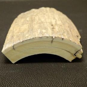 Mammut-Schalstück mit Rindenstruktur