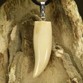 Mammut-Zahnanhänger cremig