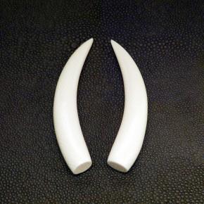 1 Paar Ersatzstoßzähne ca. 72mm lang