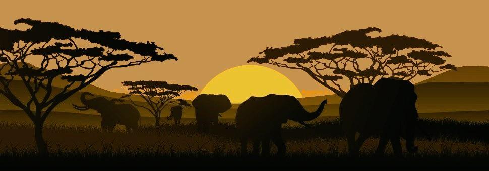 Elefanten-Silhouette4