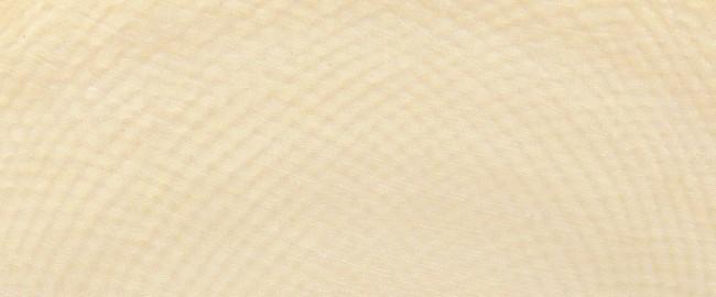 Maserung Elfenbein Detail