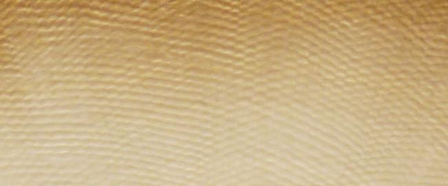 Maserung Mastodon Detail