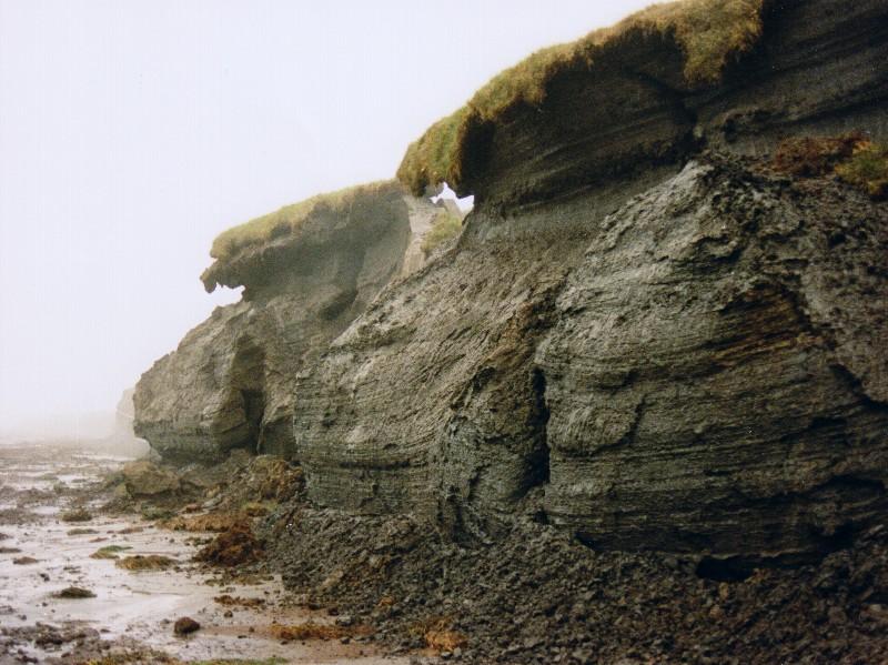 an der Polarmeerküste 002