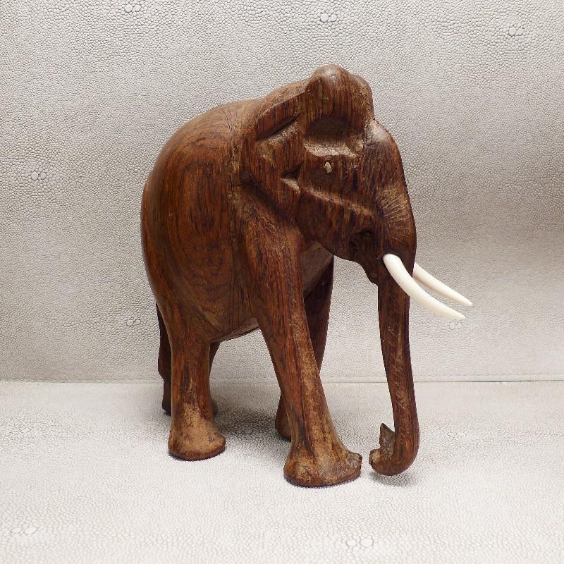 Zähne für Elefant4