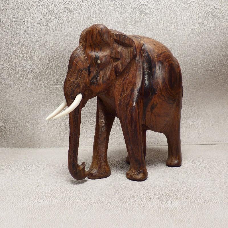 Zähne für Elefant5