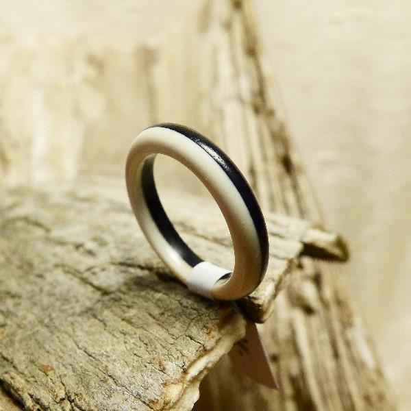 Ringe1 (2)